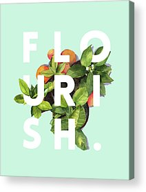 Flourishes Acrylic Prints