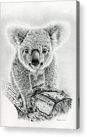 Pouch Acrylic Prints