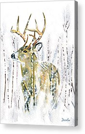 White-tailed Acrylic Prints