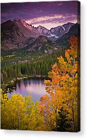 Nature Acrylic Prints