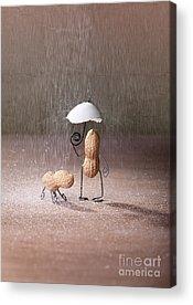 Umbrella Acrylic Prints