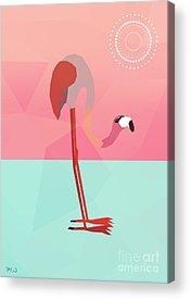 Flamingo Acrylic Prints