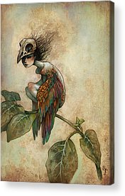 Fairy Wings Acrylic Prints
