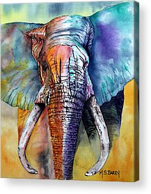 African Wildlife Acrylic Prints
