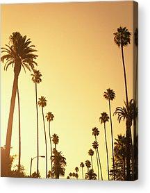 Sunset Strip Acrylic Prints