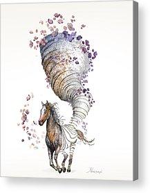Pen And Ink Digital Art Acrylic Prints