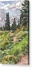 Trail Acrylic Prints