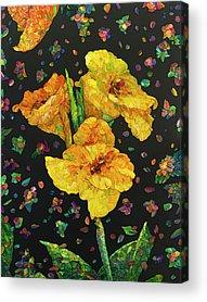 Canna Lily Acrylic Prints