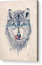 Wolves Acrylic Prints