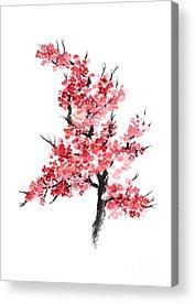Cherry Acrylic Prints