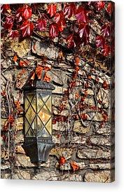 Incredible Value Photographs Acrylic Prints