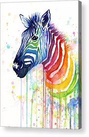 Rainbow Acrylic Prints