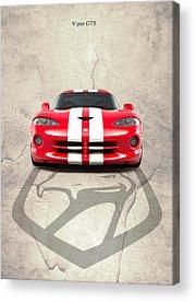 Viper Acrylic Prints