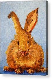 Bunny Acrylic Prints