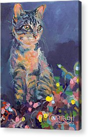 Gray Tabby Paintings Acrylic Prints