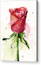 Red Roses Paintings Acrylic Prints