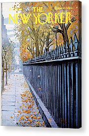 Autumn Leaves Acrylic Prints