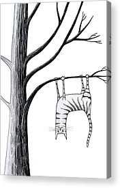 Branch Drawings Acrylic Prints