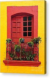 Flowerpots Acrylic Prints