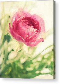 Sharpie Acrylic Prints