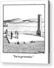 Termites Acrylic Prints