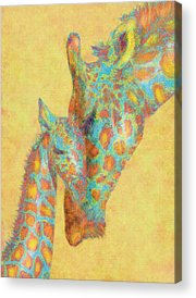 Giraffe Digital Art Acrylic Prints
