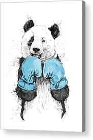 Boxer Drawings Acrylic Prints
