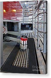 Cattle-shed Acrylic Prints