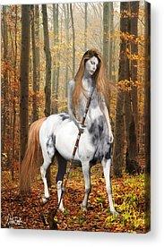 Centaur Acrylic Prints