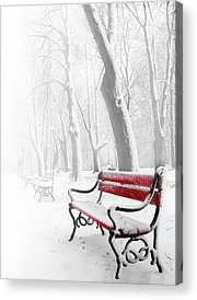Winter Landscape Acrylic Prints