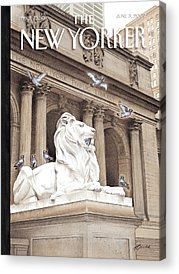 Library Photographs Acrylic Prints