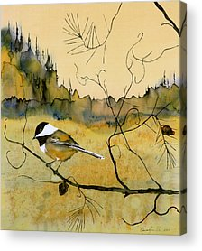 Chickadee Acrylic Prints