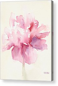 Pink And White Acrylic Prints