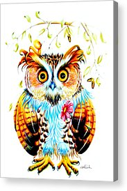 Visual Creations Acrylic Prints
