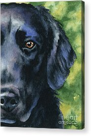 Flat-Coated Retriever Art Angel Da Vinci Flattie Dog Print Dog Lover Memorial Gifts gallery wrapped canvas by Nobility Dogs