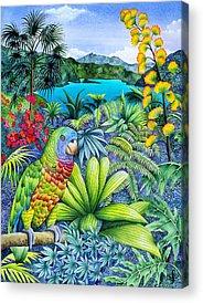 Carolyn Steele Acrylic Prints