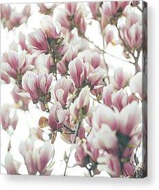 Spring Acrylic Prints