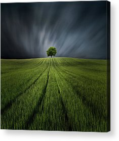 Dark Green Acrylic Prints