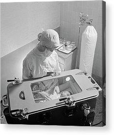 Premature Babies Acrylic Prints