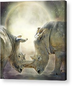 Rhinoceros Mixed Media Acrylic Prints