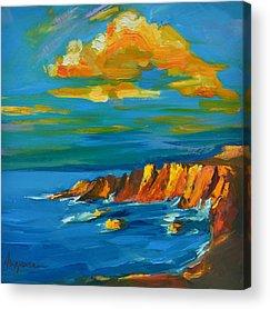 Fine Art Of Big Sur Gallery Acrylic Prints