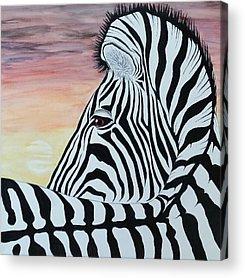 Steven White Mixed Media Acrylic Prints
