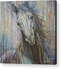 Horse Paintings Acrylic Prints