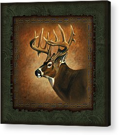 Wildlife Acrylic Prints