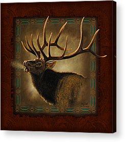 Elk Acrylic Prints
