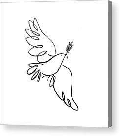 Dove Acrylic Prints