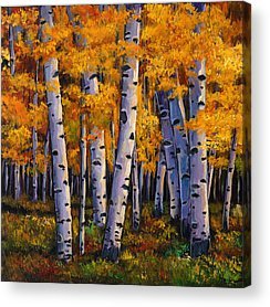Autumn Scene Acrylic Prints