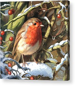 Christmas Greeting Acrylic Prints