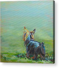 Terriers Acrylic Prints
