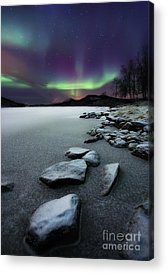 Snow Acrylic Prints